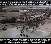 Fear Not! The Greater Exodus & Gathering Back to the Land